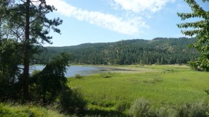 We just listed this Rose Lakeview Property on .5 Acre in Cataldo Idaho