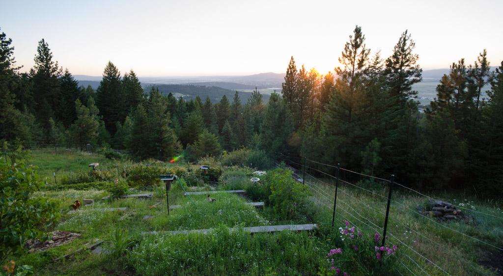26 Terraced Garden