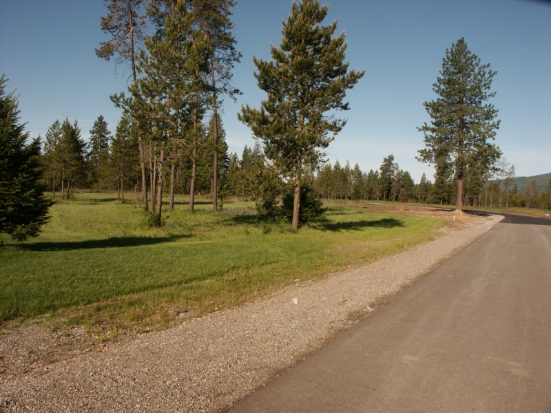 04 Paved County Road